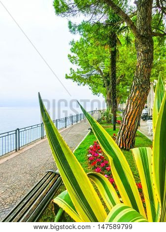 The walkway on the shore, Lake Garda, Italy, Europe