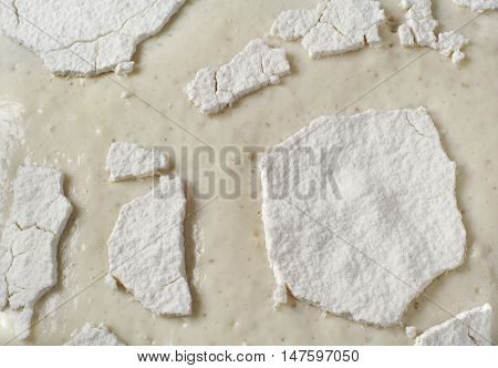 Texture wheat dough yeast closeup. Food background