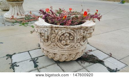 Gypsum vase in the old antique style on the street with the red flowers