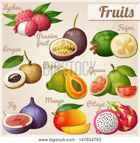 Set of cartoon food icons. Exotic fruits. Lychee litchi, passion fruit, feijoa, longan, papaya pawpaw, guava, fig, mango, pitaya dragon fruit