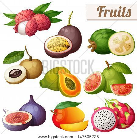 Set of cartoon food icons. Exotic fruits isolated on white background. Lychee litchi, passion fruit, feijoa, longan, papaya pawpaw, guava, fig, mango, pitaya dragon fruit