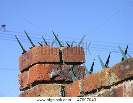 Sharp Security Spikes On Back Yard Wall 01a