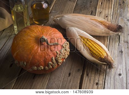 Still life of pumpkin and maize on wooden old table.