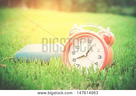 alarm clock on green grass in the park