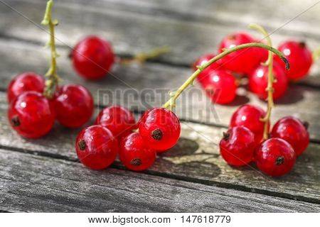 Closeup of red currant berries on wooden background.