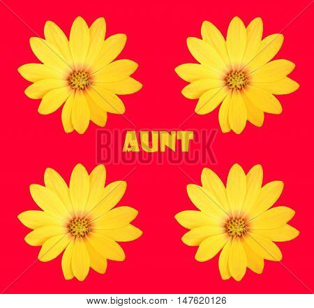 Abstract creative floral aunt greeting card scene