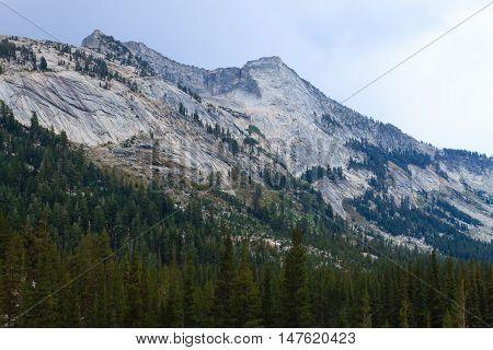 Panorama From Yosemite National Park