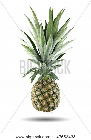 pineapple fruit isolated on white background and have clipping paths.