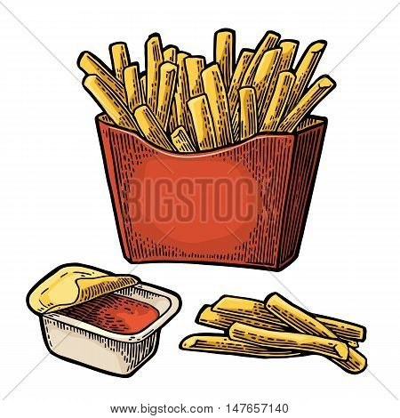 French fry stick potato in red paper box. Isolated on white background. Vector color vintage engraving illustration for poster menu web banner info graphic