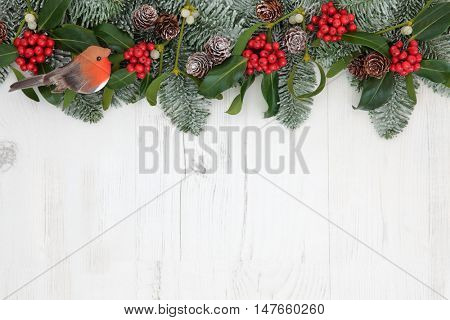 Traditional winter and christmas background border with robin decoration, flora of holly, mistletoe, snow covered  fir and pine cones over white distressed white wood