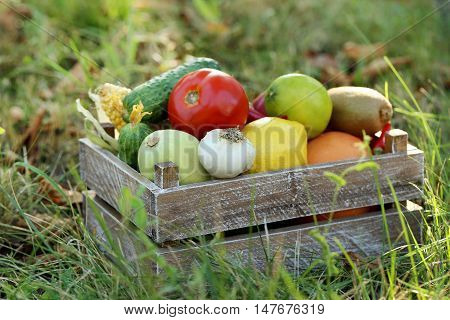 Ripe And Tasty Fruits And Vegetables In Basket On The Grass