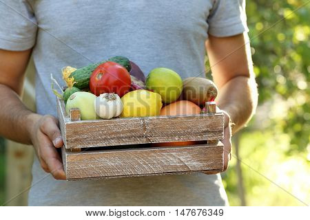 Man Holding In Hands Crate With Fruits And Vegetables