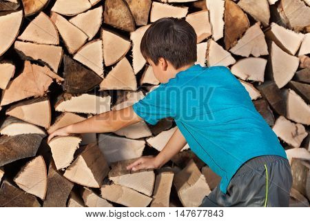 Young boy stacking firewood in the shed - placing big chunks of wood