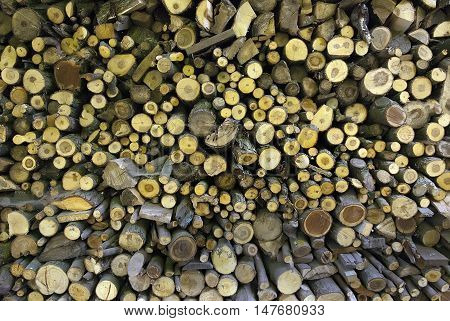 Dry firewood in a pile for furnace kindling wooden background
