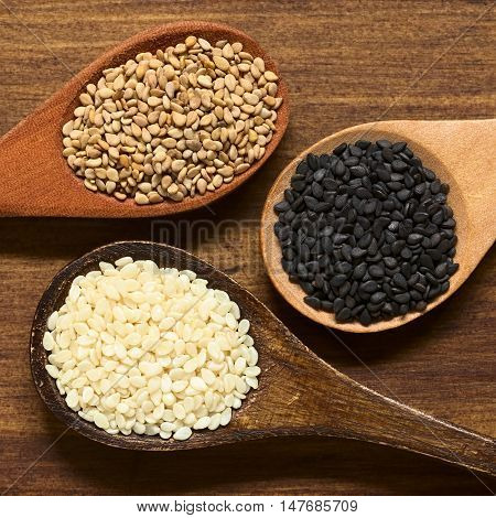 Black white and roasted sesame seeds on small wooden spoons photographed overhead on wood with natural light (Selective Focus Focus on the seeds on the top)