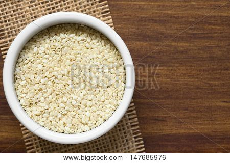 White sesame seeds in small bowl photographed overhead with natural light (Selective Focus Focus on the seeds on the top)