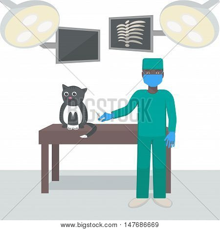 Veterinarian with a cat in a medical office. Vector illustration.