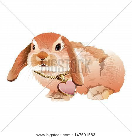 Glamorous pink rabbit in a jewelry in the form of heart. Isolated vector illustration