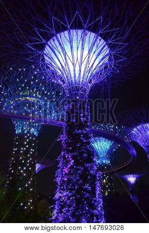 Giant Trees at the Gardens by the Bay in Singapore