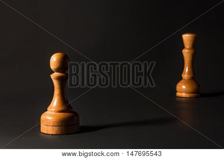 Chess Pieces Made Out Of Wood