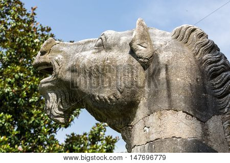 ROME, ITALY - JUNE 12, 2015: Ancient statue of horse in baths of Diocletian (Thermae Diocletiani) in Rome. Italy