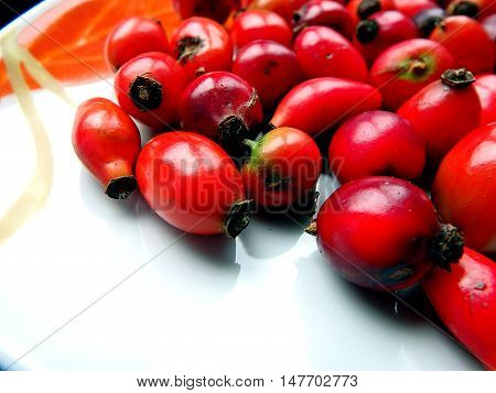 Rose Hips , background rose hips ,