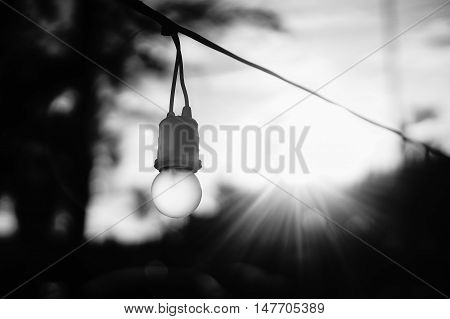 portait of a hanging light bulb in daylight with sun in background and flare effect from the sun,blurred background,selective focus
