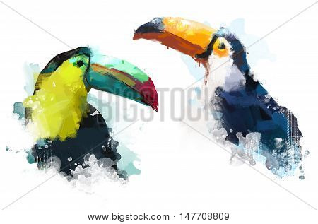 Watercolor bird, illustration Toucan, Toucan watercolor, tropical birds