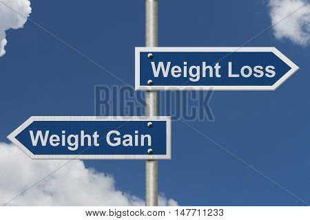 Weight Loss versus Weight Gain Two Blue Road Sign with text Weight Loss and Weight Gain with sky background, 3D Illustration
