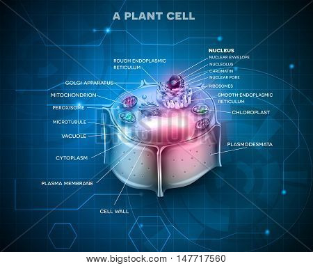 Plant Cell detailed anatomy scientific blue background