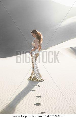 Professional photo shoot in a desert. Beautiful sexy asian woman model in luxury shiny long dress in a desert