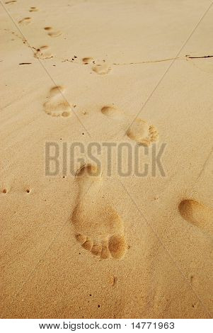 Footprints in the sand on caribbean beach