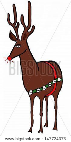 Color Christmas illustration of the red-nosed reindeer.