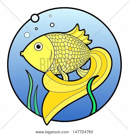 Golden fish with bubbles and water-plant in water