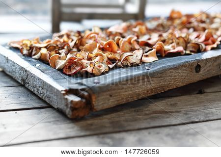 Drying apples in the sun. Chips with apples. Healthy naturally dried fruit.