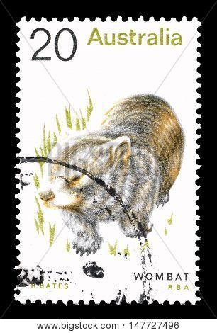 AUSTRALIA - CIRCA 1974 : Cancelled postage stamp printed by Australia, that shows Wombat.