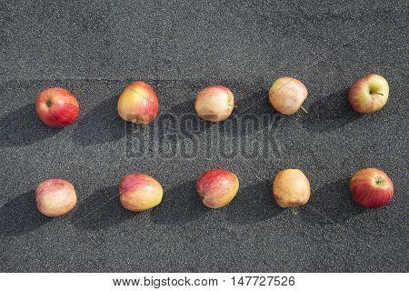 a scattering of red apples on a background of asphalt