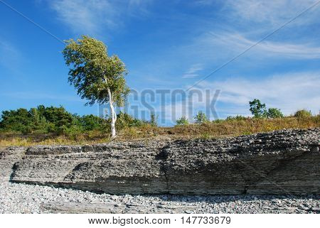 Eroded coastline at the swedish island Oland in the Baltic Sea
