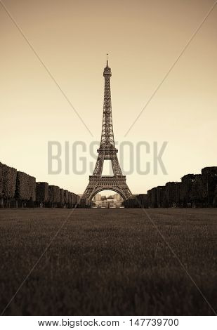 Eiffel Tower with lawn as the famous city landmark in Paris