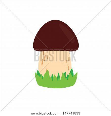 Mushroom organic nature. Mushroom vector illustrations. Mushroom with grass.