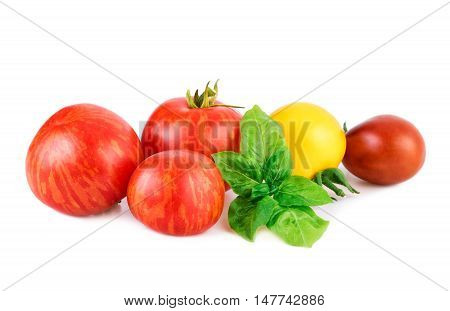Tomatoes with basil leaf. Various of tomato with basil leaf isolated on white.
