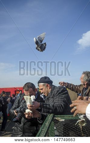 Istanbul Turkey - January 01 2015: Outdoor Bird Market in Istanbul. Topkapi Edirnekapi bird market every week on Saturdays and Sundays open market. Day 1000 - 1500 people are said to have visited the market. in many colors in the market many species are s
