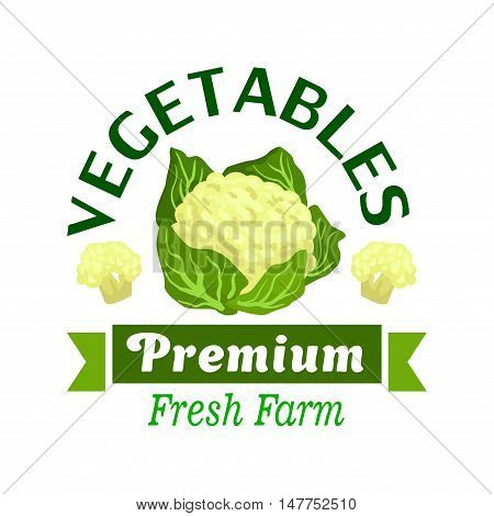 Fresh farm vegetables badge of cauliflower vegetable with green leaves, flanked by inflorescences and ribbon banner with text Premium. Farm market, agriculture and food packaging design