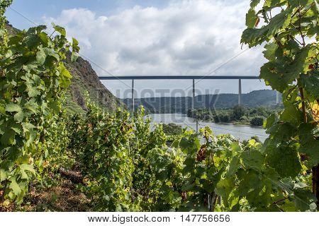 Famous German Wine Region Moselle River with bridge in Winningen