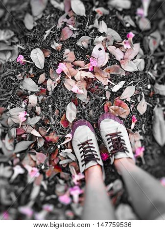 Standing on falling leaves and stand on autumn leaves.