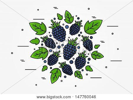 Blackberry Line Art Vector Concept