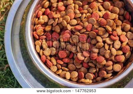Closeup metal bowl with fresh dog food sitting on green grass, animal nutrition concept.