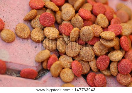 Closeup pile of fresh red and brown colored crunchy dog food lying on stone tiles surface.