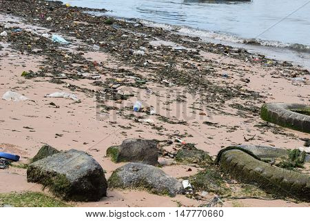 A picture showing how our serious beach pollution is.