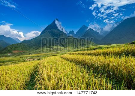 Beautiful rice paddy fields during trip HANOI to SAPA at Mu Cang Chai YenBai Vietnam. at Northwest Vietnam.Vietnam landscapes.
